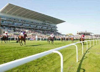 PILASTER TO SHINE IN LILLIE LANGTRY AT GOODWOOD