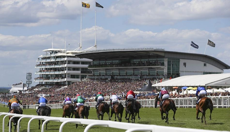 fromthehorsesmouth.tips had a 21-1 double at Epsom's 2019 Derby meeting