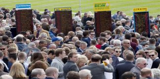 8,554-1 eleven horse winning accumulator by fromthehorsesmouth.tips