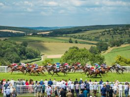 Glorious Goodwood selections placed in seven race card on Day 4!'