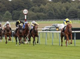 Teodoro winning the Rose of Lancaster Stakes in 2018.