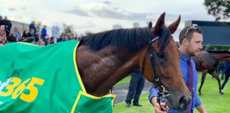 Lord North lands the Bet365 Cambridgeshire. Img Twitter