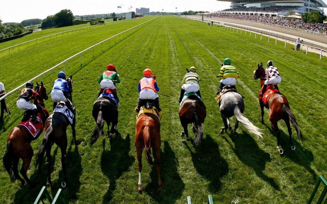 Bookies hit for six in 985-1 fromthehorsesmouth.tips 6 horse winning accumulator!