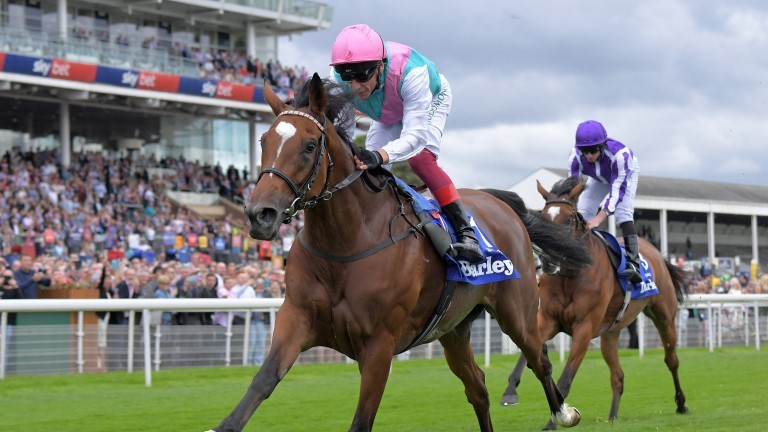 Dettoris 'girl' Enable set for tilt at 2020 Qatar Prix de l'Arc de Triomphe