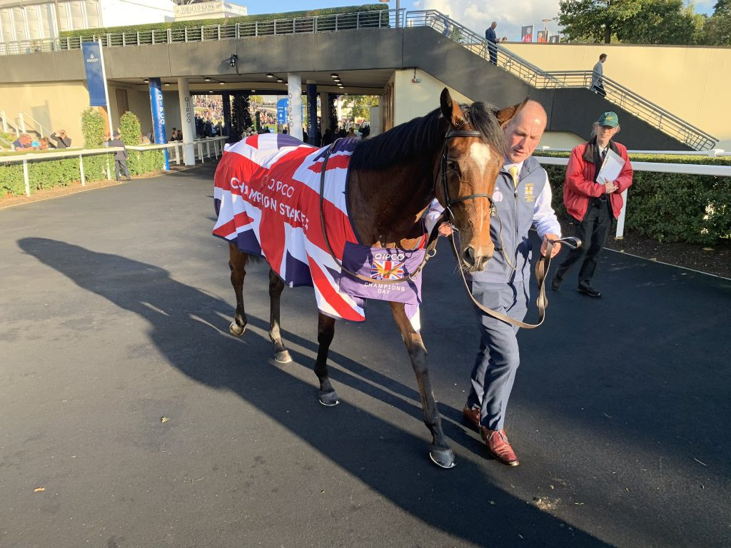 Ballydoyle maestro Aidan O'Brien declared Magical 'incredible' after - winning the Qipco Champion Stakes at Ascot - selected by fromthehorsesmouth.tips