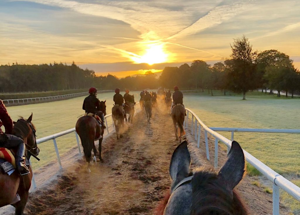 A Simply Beautiful November morning at Ballydoyle, the stable of Aidan O'Brien
