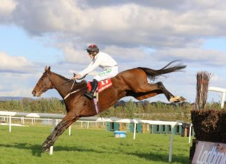 Cabaret Queen attempts Ladbrokes Trophy glory