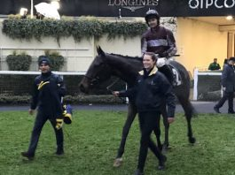 SOARING Glory's win on Saturday, under jockey Jonjo O'Neill jnr, completed a fromthehorsesmouth.tips 289-1 four-horse winning accumulator at Ascot.