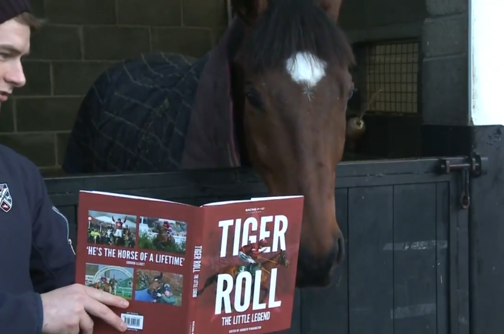 At present nine year old Tiger Roll is in rehab on 'box rest'