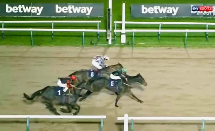 Shine Baby Shine, beaten a neck by Bodacious Name at Southwell - with The Resdev Way, third.