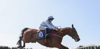 Bacardys all round at Leopardstown