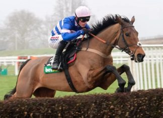 Philip Hobbs trained headlined tip Thyme Hill remains unbeaten over hurdles